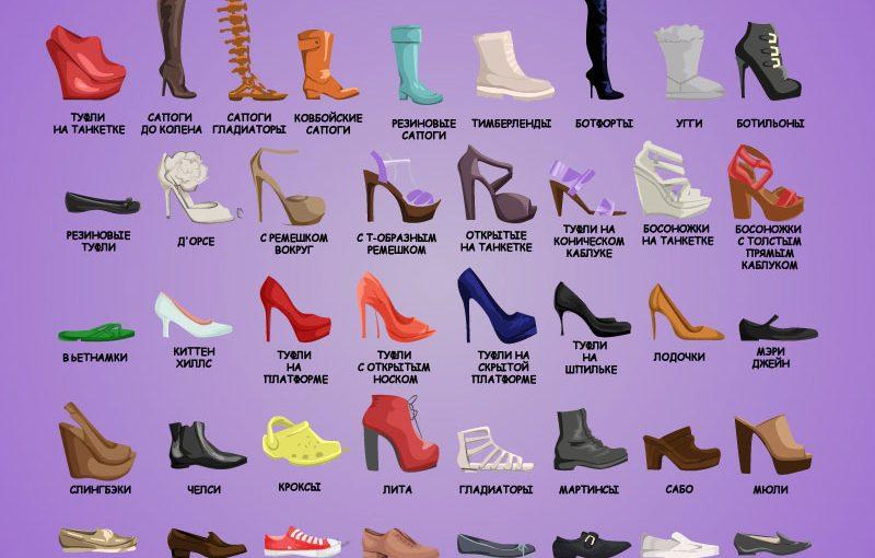 Обувной словарик, который пригодится каждой женщине